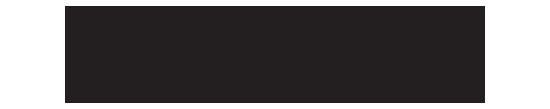 borough brand logo